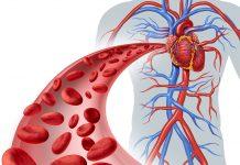 Koronarna srčna bolezen