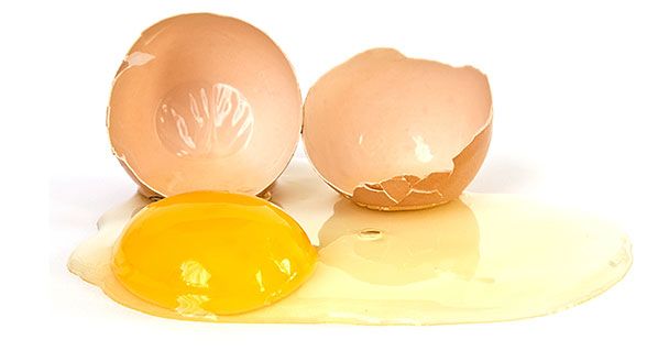 Jajce