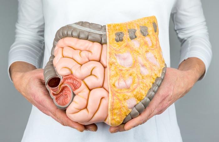 Črevesne bolezni