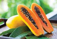 Papaja sadež