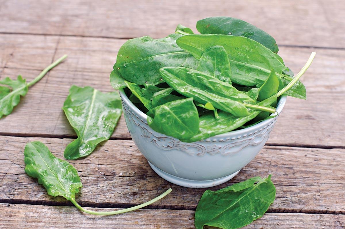 Naravni antibiotik zelenjava