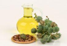 Ricinusovo olje za zdravje