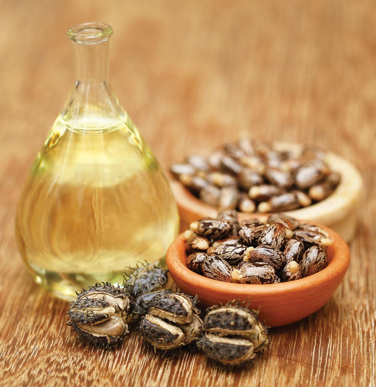 Ricinusovo olje - uporaba in učinkovine