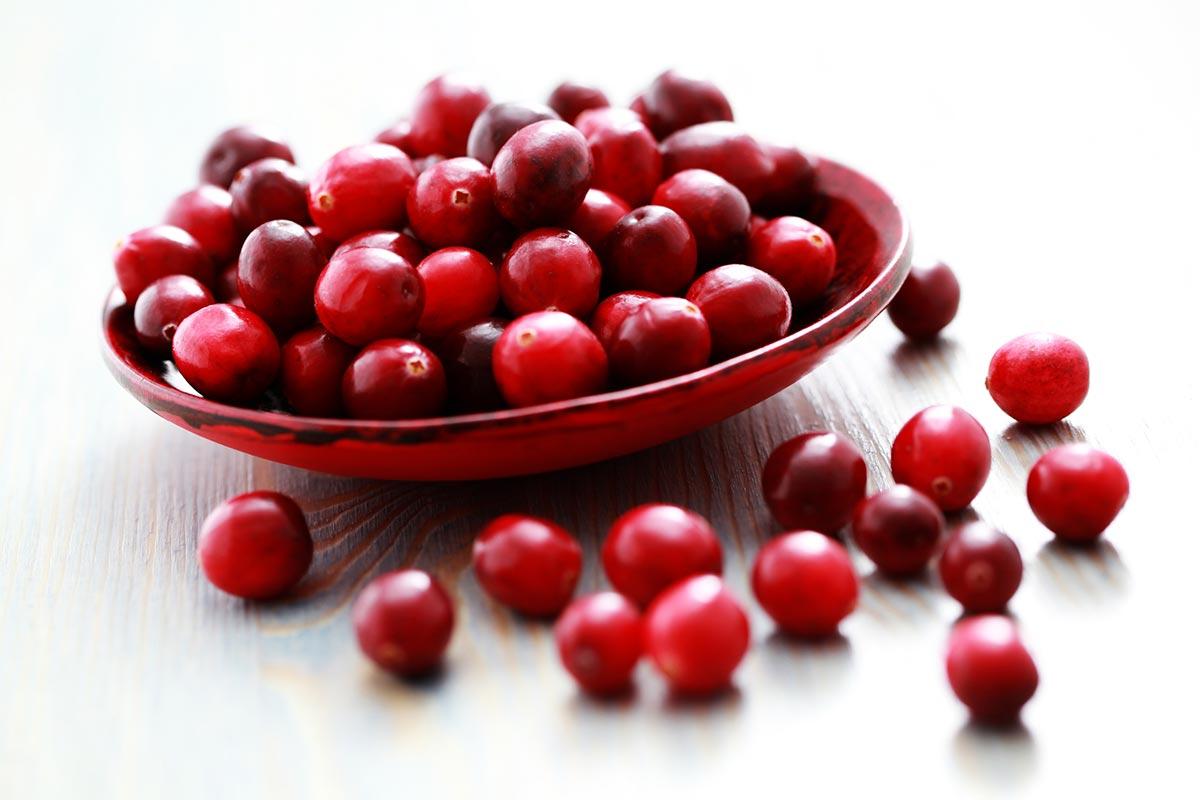 Brusnice, naravno zdravolo za sečila in vnetje mehurja