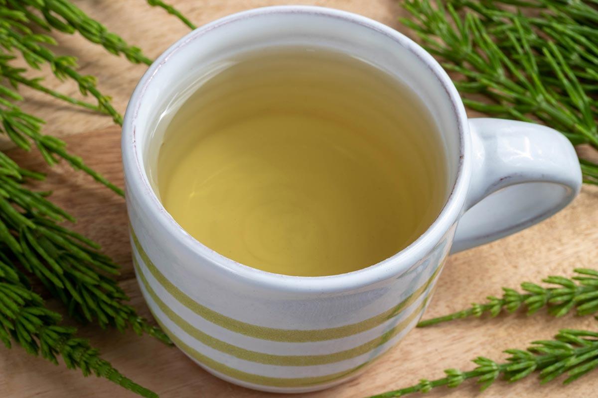 Ortosifon - javanski čaj